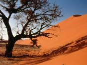 Sand Dunes Central Africa